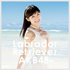 AKB48 type 4 Labrador Retriever